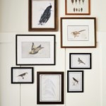 Free Printables Bird Gallery