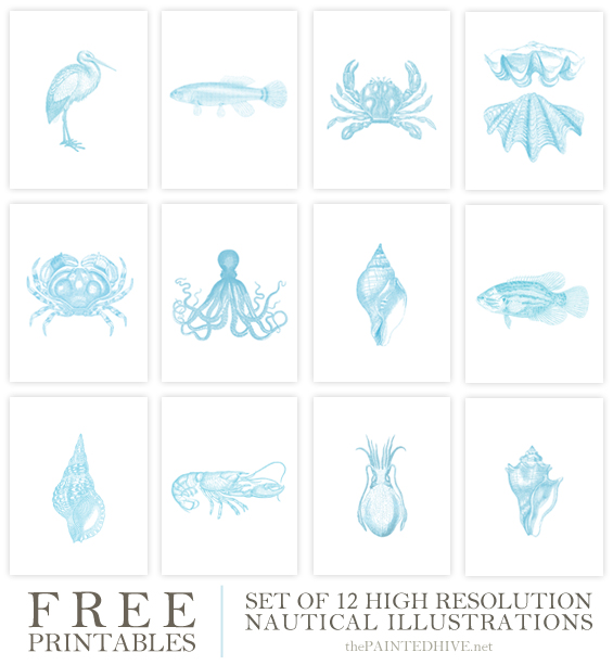 Free Printables - 12 Nautical Illustrations | The Painted Hive
