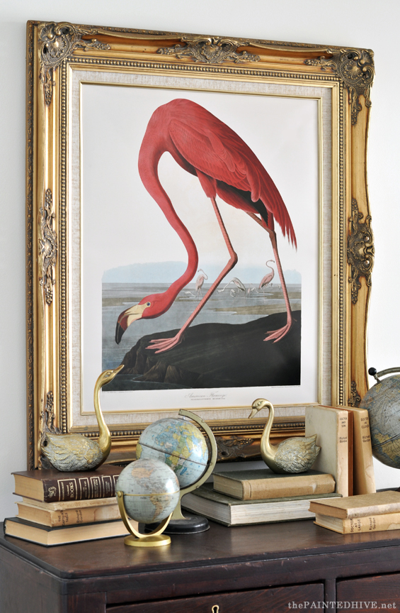 Audubon American Flamingo Free Printable The Painted Hive