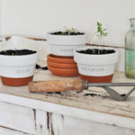 Easy DIY Herb Pots