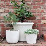 A Quick & Simple DIY Plant Pot Update
